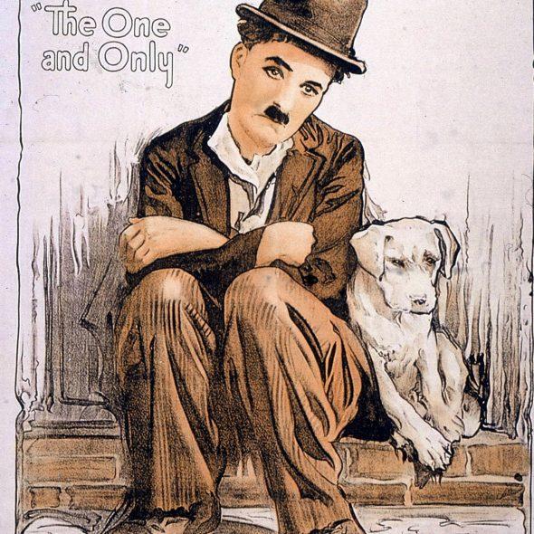 Film da cani