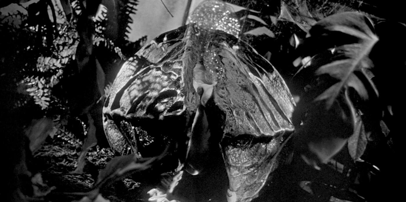 Stranger Things 3 somiglia a l'invasione degli ultracorpi