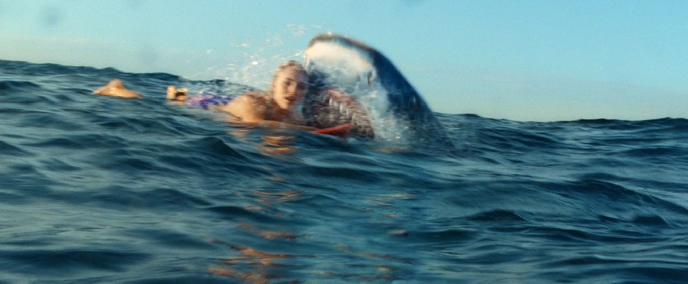soul surfer squalo film